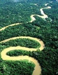 Hacer Turismo en el río Amazonas una gran aventura